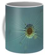 Actinophyrs Lm Coffee Mug