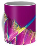 Adenosine Triphosphate Coffee Mug by Michael W. Davidson