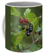 Alder Buckthorn Coffee Mug
