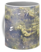 Algae Bloom In A Pond Coffee Mug by Photo Researchers, Inc.