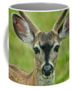 All Ears Coffee Mug