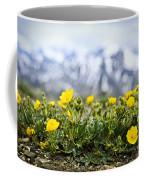 Alpine Meadow In Jasper National Park Coffee Mug by Elena Elisseeva