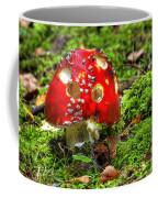 Amanita Muscaria Coffee Mug