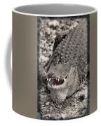 American Alligator Coffee Mug