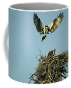 An Osprey Carrying A Fish Back Coffee Mug
