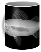 An X-ray Of Yellow Perch Coffee Mug
