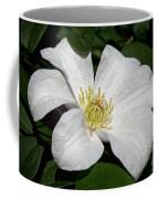 Artic White Coffee Mug