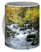 Autumn Stream 3 Coffee Mug