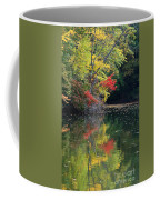 Autumn Tree Reflections Coffee Mug