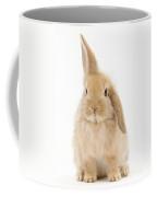 Baby Sandy Lop Rabbit Coffee Mug