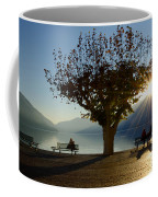 Benches And Trees Coffee Mug