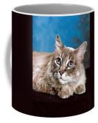 Big Blue Eyes Coffee Mug