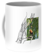 Black-bellied Whistling-duck Coffee Mug