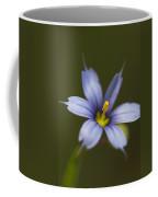 Blue-eyed Grass Wildflower - Sisyrinchium Angustifolium Coffee Mug