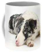 Blue Merle Border Collie Coffee Mug