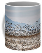 Bombay Beach Birds Coffee Mug