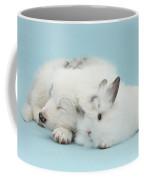 Border Collie Pup Sleeping With Rabbit Coffee Mug