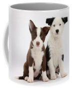 Border Collie Puppies Coffee Mug