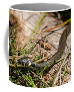 British Grass Snake Coffee Mug