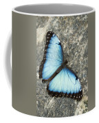 Butterfly, Niagara Botanical Gardens Coffee Mug