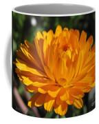 Calendula Named Bon-bon Orange Coffee Mug