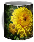Calendula Named Bon-bon Yellow Coffee Mug