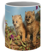 Canadian Lynx Kittens, Alaska Coffee Mug
