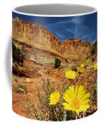 Capitol Flower Garden Coffee Mug
