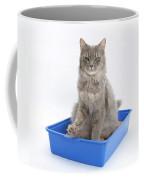 Cat Using Litter Tray Coffee Mug