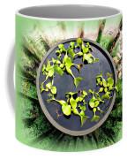 Center Of A Pond Coffee Mug