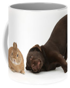 Chocolate Lab & Netherland-cross Rabbit Coffee Mug