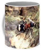 Cirrus Cloud Coffee Mug