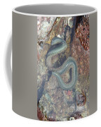 Clam Worm Coffee Mug