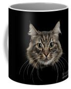 Close Up Of Cats Face Coffee Mug
