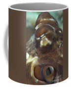 Close-up View Of A Common Octopus Coffee Mug