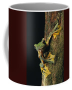 Close View Of A Wallaces Flying Frog Coffee Mug by Tim Laman