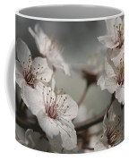 Close View Of Cherry Blossoms Coffee Mug