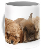 Cockerpoo Puppies And Rabbit Coffee Mug