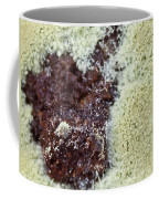 Coffee Grounds 1 Coffee Mug