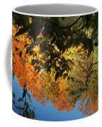 Colorful Reflections Coffee Mug by LeeAnn McLaneGoetz McLaneGoetzStudioLLCcom