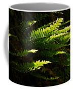Common Polypody Coffee Mug
