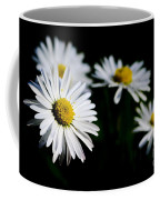 Daisy Flowers Coffee Mug