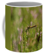 Darter 1 Coffee Mug