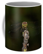 Darter 8 Coffee Mug