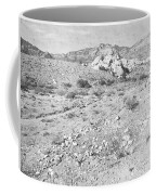 Desert Washout Coffee Mug