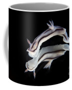 Detailed View Of A Beautiful Nudibranch Coffee Mug
