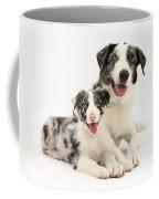 Dog And Puppy Coffee Mug