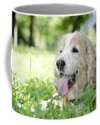 Dog On The Green Grass Coffee Mug