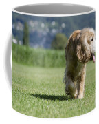 Dog Walking Coffee Mug