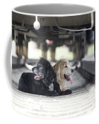 Dogs Lying Under A Train Wagon Coffee Mug